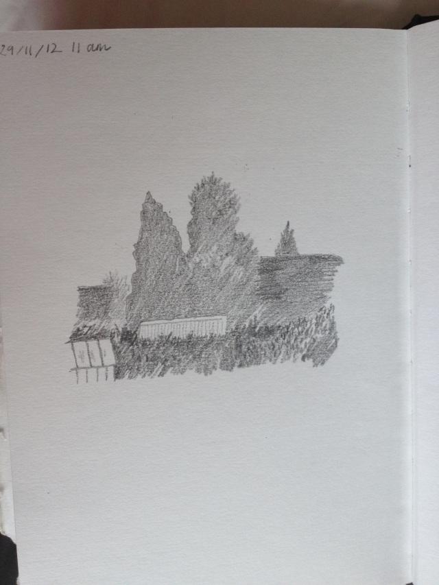 20121130-110731.jpg