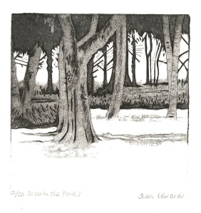 trees in snow 1 001